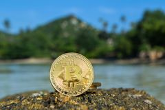 Bitcoin on the Background of Nature royalty free stock photo