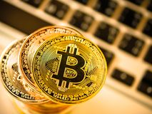 Bitcoin on blurred laptop. Virtual currency wallet bitcoin gold. Tower and printed encrypted money with qr code cryptocurrency.Digital money concept Royalty Free Stock Photography