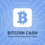 Bitcoin cash flat icon with title on chipset background. Stock Photos