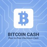 Bitcoin cash flat icon with title on chipset background. Stock Images