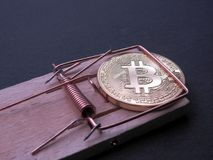 Bitcoin on mouse trap. Bitcoin caught in a copper mouse trap on black background. Bitcoin investing stays a risky business Stock Photos