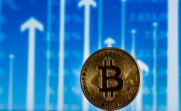 Bitcoin on the chart. Bitcoin on a blue chart Royalty Free Stock Photo