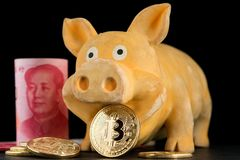Bitcoin Chinese new year concept. Chinese New Year Cocept Red Envelope. Bitcoin Chinese new year concept year of pig Bitcoin RMB Renminbi Yuan Pig Chinese New stock image