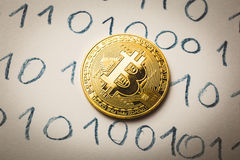 Bitcoin coin at Binary code background, Trading concept of crypto currency. Toned royalty free stock image