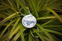 Bitcoin coin outdoor. Digital currency physical metal bitcoin coin. Cryptocurrency outdoor concept Stock Photo