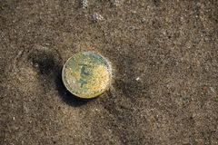 Bitcoin coin on sand in water economy finance. Gold coin bitcoin symbol e-commerce internet money Stock Photography
