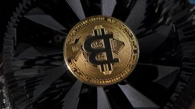 Bitcoin coins for the economy. Spinning on the table, creating a beautiful picture stock footage
