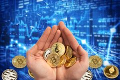Bitcoin coins in two palms. Bitcoin Against the background are scattered coins. Dark blue background of rising and falling cryptoc royalty free stock images