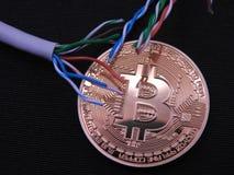 Bitcoin com em cabos superiores do utp Imagem de Stock