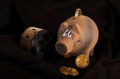 Bitcoin miner, some golden coins and piggy bank for savings. Bitcoin crypto currency savings and earn concept Stock Photos