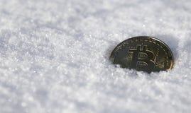 Bitcoin Cryptocurrency på snö, i bakgrunden Begreppet av att frilansa, börsen Guld- bitcoin på förkylning fotografering för bildbyråer