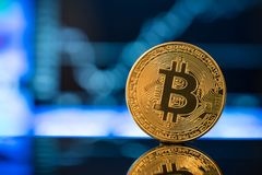 Bitcoin currency and growth graph. In blur background Stock Photography