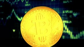 Bitcoin de la moneda de oro, contra la perspectiva de la exhibición con un gráfico de citas almacen de video