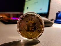 Bitcoin digitalt Cryptocurrency mynt royaltyfria foton