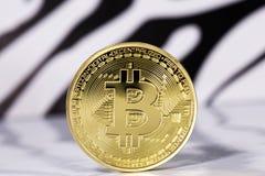 Bitcoin do ouro Fotografia de Stock Royalty Free