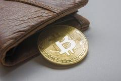 Bitcoin dolara i pieniądze złoty menniczy Nowy wirtualny tło Cryptocurrency Biznes i Handlarski pojęcie Zakończenie Zdjęcia Royalty Free
