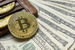 Bitcoin dolara i pieniądze złoty menniczy Nowy wirtualny tło Cryptocurrency Biznes i Handlarski pojęcie Zakończenie Fotografia Royalty Free