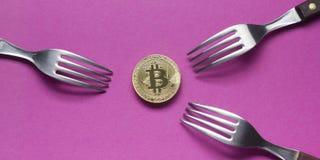 Bitcoin dolara i pieniądze złoty menniczy Nowy wirtualny tło Cryptocurrency Biznes i Handlarski pojęcie Zakończenie Obraz Stock