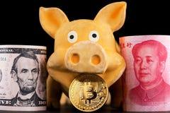 Bitcoin Dollar Yuan RMB Cryptocurrency Pig Year China Renminbi. Bitcoin Chinese new year concept. Chinese Zodiac sign year of pig. renminbi yuan bitcoin china stock images