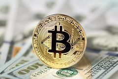 Coin bitcoin on dollars, concept finance, investments, profit Royalty Free Stock Images