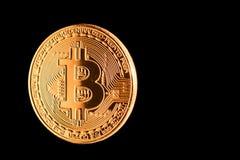 Bitcoin dorato ha isolato Fotografia Stock