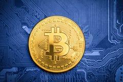 Bitcoin dorato sul circuito stampato Fotografie Stock Libere da Diritti