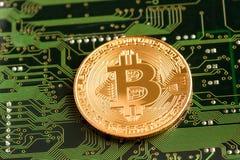 Bitcoin dourado Cryptocurrency na placa de circuito foto de stock royalty free