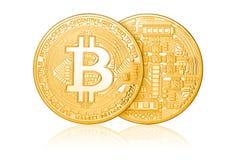 Bitcoin dourado isolou-se Imagens de Stock