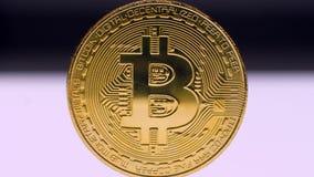 Bitcoin dourado no fundo branco vídeos de arquivo