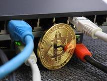 Bitcoin e rete fotografie stock libere da diritti