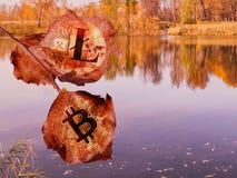 Bitcoin en litecoin de muntstukken zijn in de vorm van rode bladeren op een achtergrond van de herfstbomen en een meer De digital royalty-vrije stock afbeeldingen