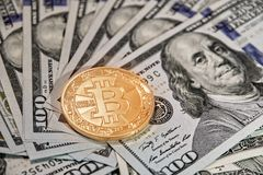 Bitcoin gold coin lies on fanned American 100 dollars money dollars with the image of Franklin scattered on the surface. Bitcoin gold coin lies in middle of one stock photography