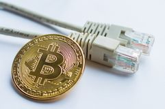 Bitcoin gold coin and network wire connectors patch cord cable. Concept of digital money transfer royalty free stock photo