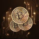 Bitcoin golden coin. Royalty Free Stock Image