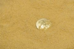 Bitcoin on golden sand. One bitcoin crypto coin on brilliant golden sand. finding and mining cryptocurrency royalty free stock photos