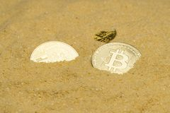 Bitcoin on golden sand. Several bitcoin crypto coins on brilliant golden sand. finding and mining cryptocurrency royalty free stock photos