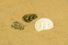 Bitcoin on golden sand. Several bitcoin crypto coins on brilliant golden sand. finding and mining cryptocurrency royalty free stock photography