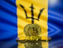 Bitcoin-Goldmünze und defocused Flagge von Barbados-Hintergrund Virtuelles cryptocurrency Konzept stockbilder