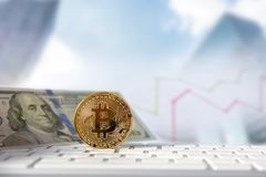 Bitcoin gouden muntstuk met financiële grafiek en dollarachtergrond Stock Fotografie