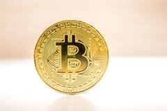 Bitcoin guld- mynt som förläggas på vit- och bruntbakgrund Guld- mynt av cryptocurrencyen Royaltyfri Fotografi
