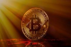 Bitcoin Guld- pengar Bitcoin på guld- bakgrund guld- strålar Royaltyfri Fotografi