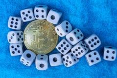 Bitcoin gult mynt och vit modig tärning på blå ull royaltyfria bilder