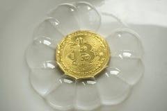 Bitcoin i en såpbubbla på purpurfärgad bakgrund med solljus royaltyfri foto