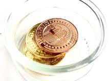 Bitcoin i kruset Royaltyfria Foton