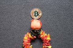 Bitcoin ist, das Konzept des Wachstums von bitcoin Preisen wachsend stockbilder