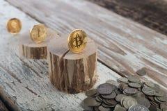 Bitcoin, litecoin ethereum en oude muntstukken, gouden muntstukken Cryptocurrencyconcept: groei of val Uitstekende houten achterg Royalty-vrije Stock Foto's