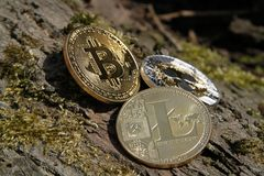 Bitcoin, litecoin y ondulación cercanos para arriba en corteza fotografía de archivo libre de regalías