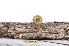 Bitcoin, litecoinethereum och gamla mynt, guld- mynt på tappningträbakgrund, vit bakgrund med utrymme för text Begrepp: Arkivbild