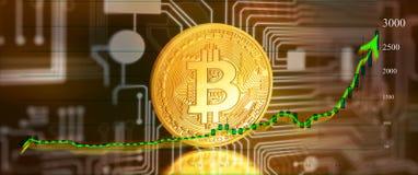 Bitcoin met grafiek stock illustratie