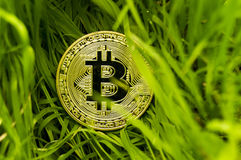 Bitcoin is a modern way of exchange and this crypto currency is a convenient means of payment in the financial and web markets Stock Image
